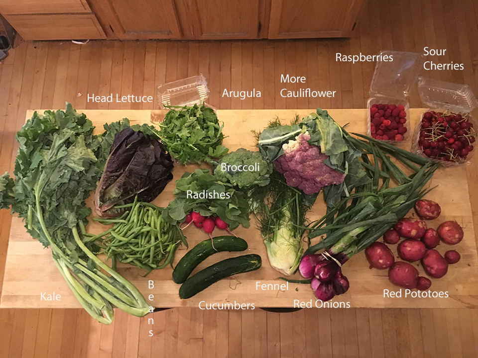 The Week of 17 Vegetables, Part 2